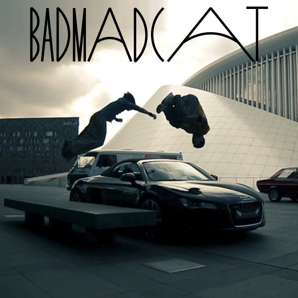 BAD MAD CAT